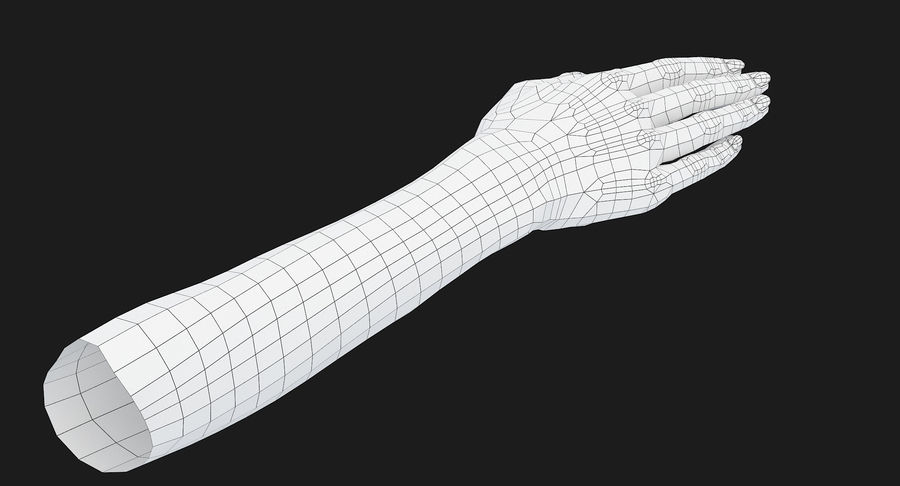 Female Arm A (Pose C) royalty-free 3d model - Preview no. 25