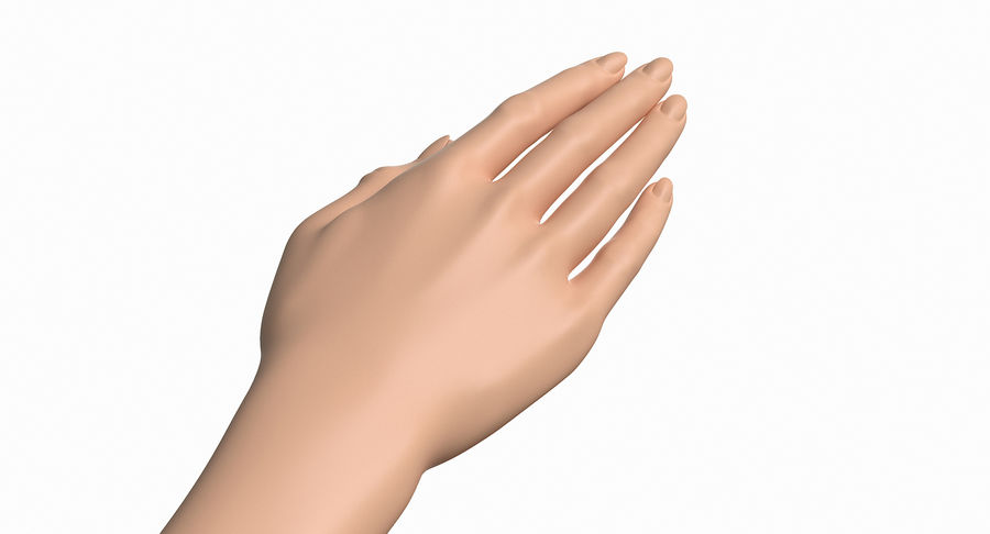 Female Arm A (Pose C) royalty-free 3d model - Preview no. 15
