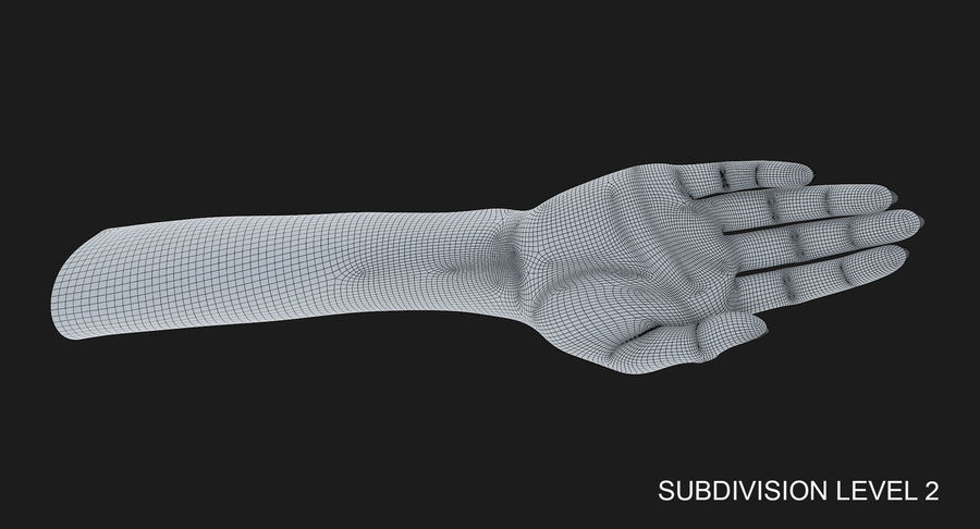 Female Arm A (Pose C) royalty-free 3d model - Preview no. 39
