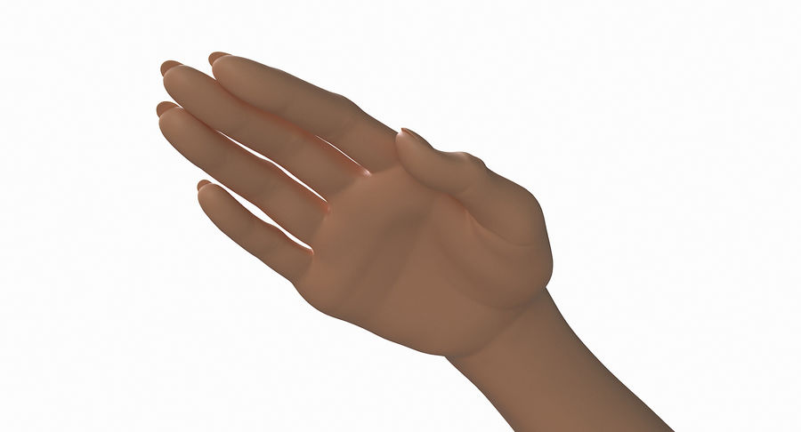Female Arm A (Pose C) royalty-free 3d model - Preview no. 12