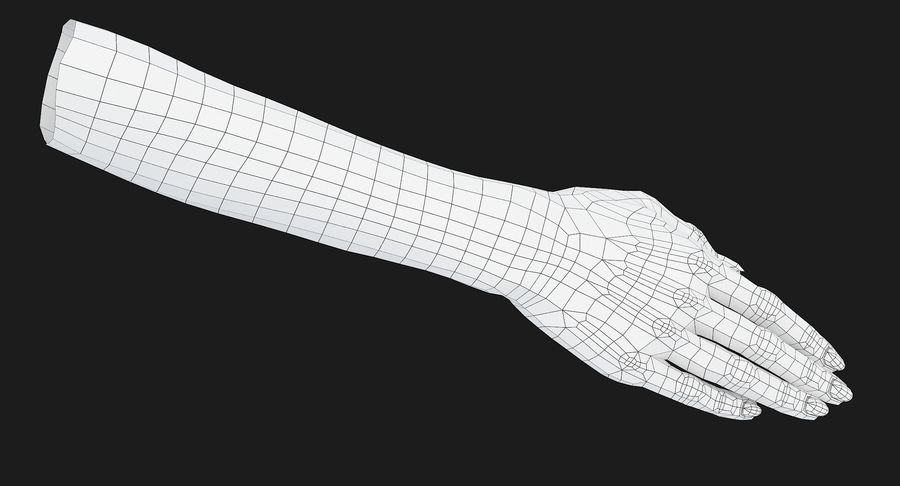 Female Arm A (Pose C) royalty-free 3d model - Preview no. 24