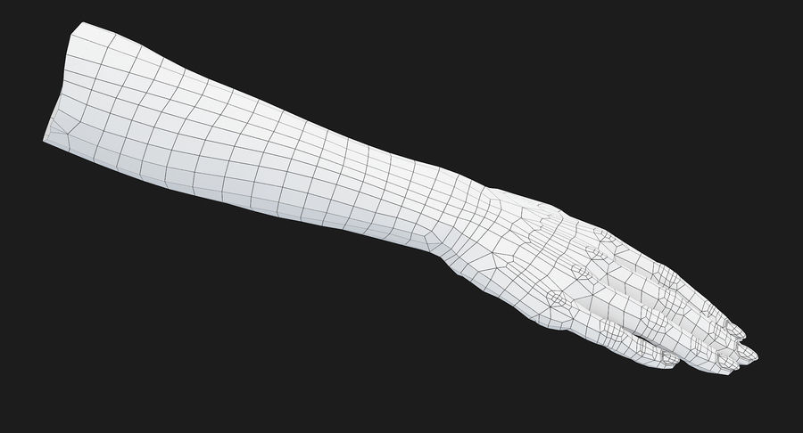 Female Arm A (Pose C) royalty-free 3d model - Preview no. 23