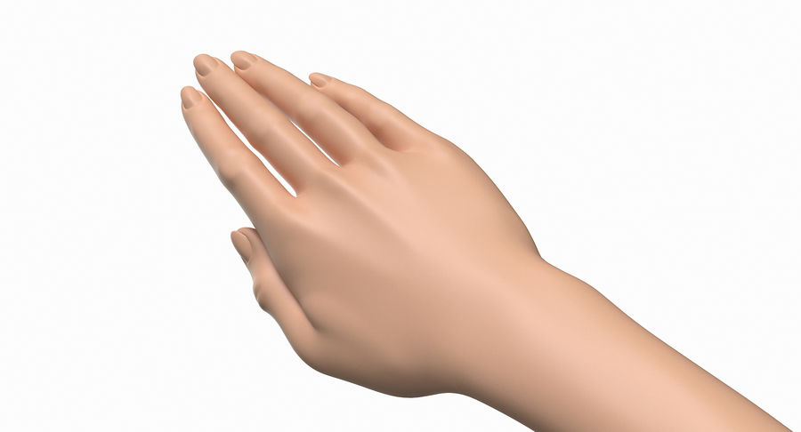 Female Arm A (Pose C) royalty-free 3d model - Preview no. 14