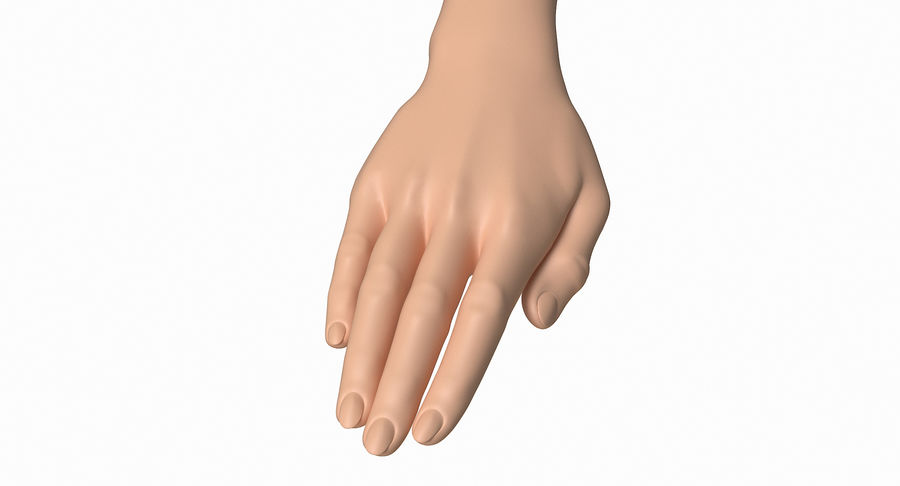 Female Arm A (Pose C) royalty-free 3d model - Preview no. 13