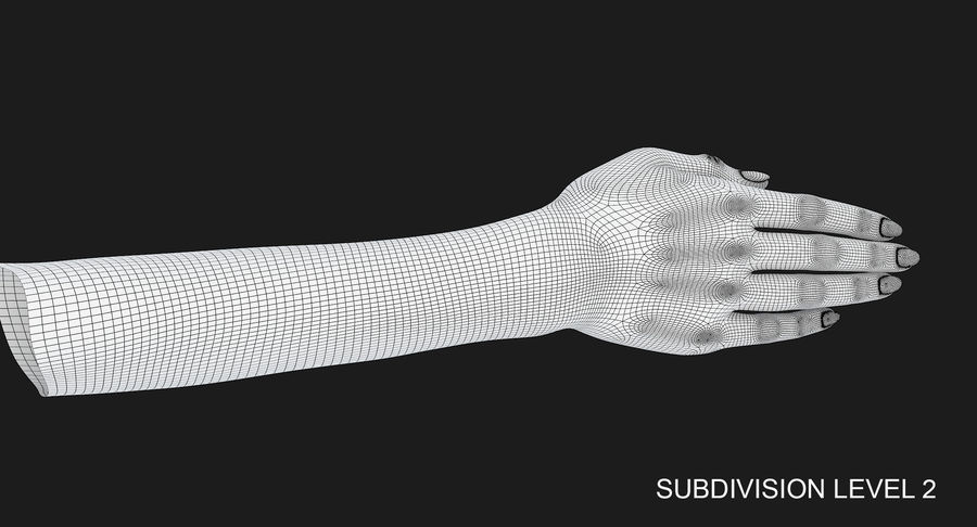 Female Arm A (Pose C) royalty-free 3d model - Preview no. 37