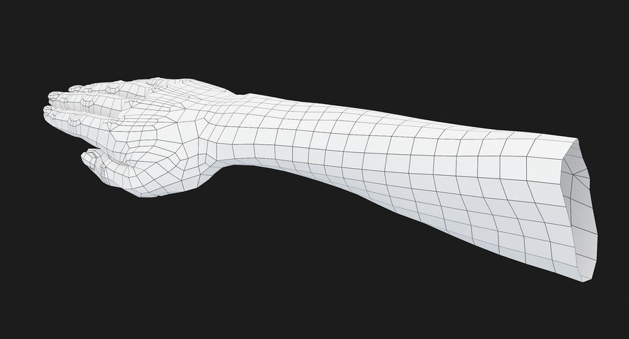 Female Arm A (Pose C) royalty-free 3d model - Preview no. 20