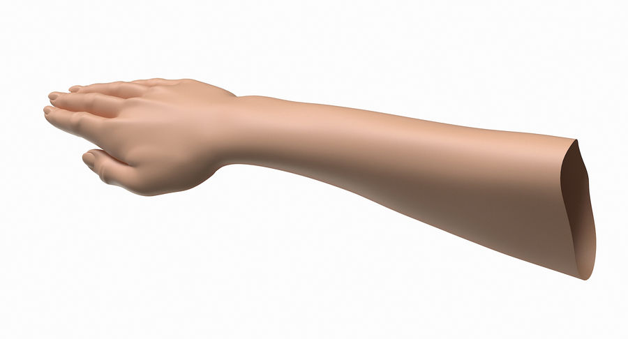 Female Arm A (Pose C) royalty-free 3d model - Preview no. 4