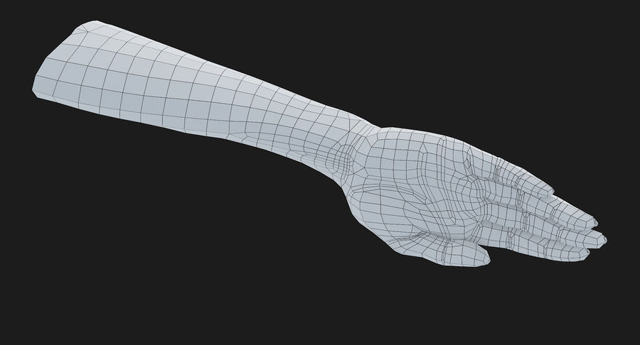 Female Arm A (Pose C) royalty-free 3d model - Preview no. 22