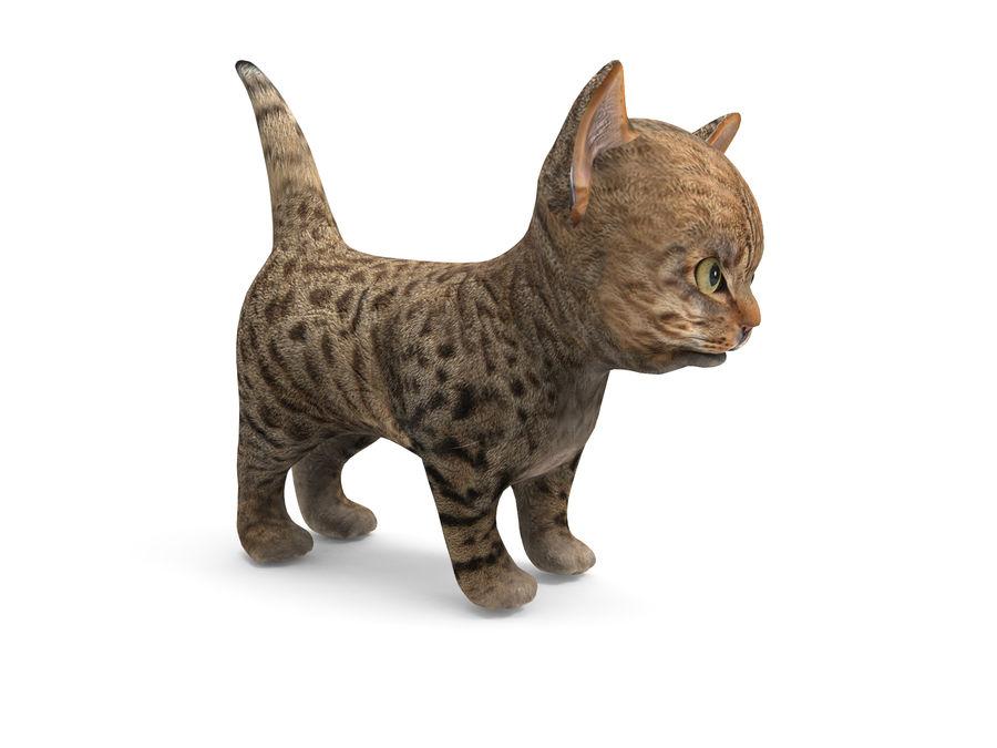 sevimli kedi yavru kedi düşük Poli royalty-free 3d model - Preview no. 6