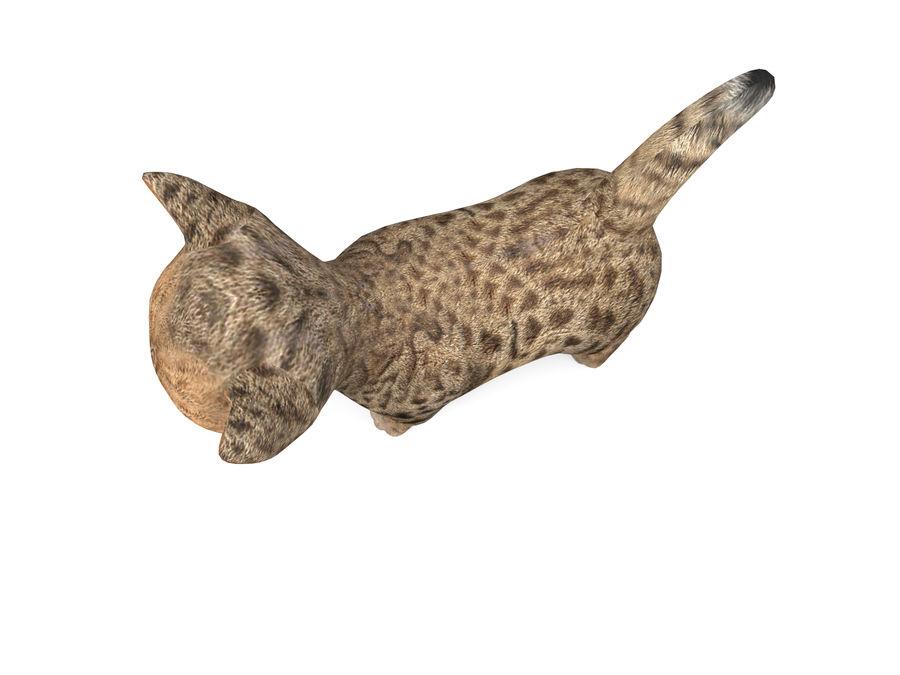 sevimli kedi yavru kedi düşük Poli royalty-free 3d model - Preview no. 3