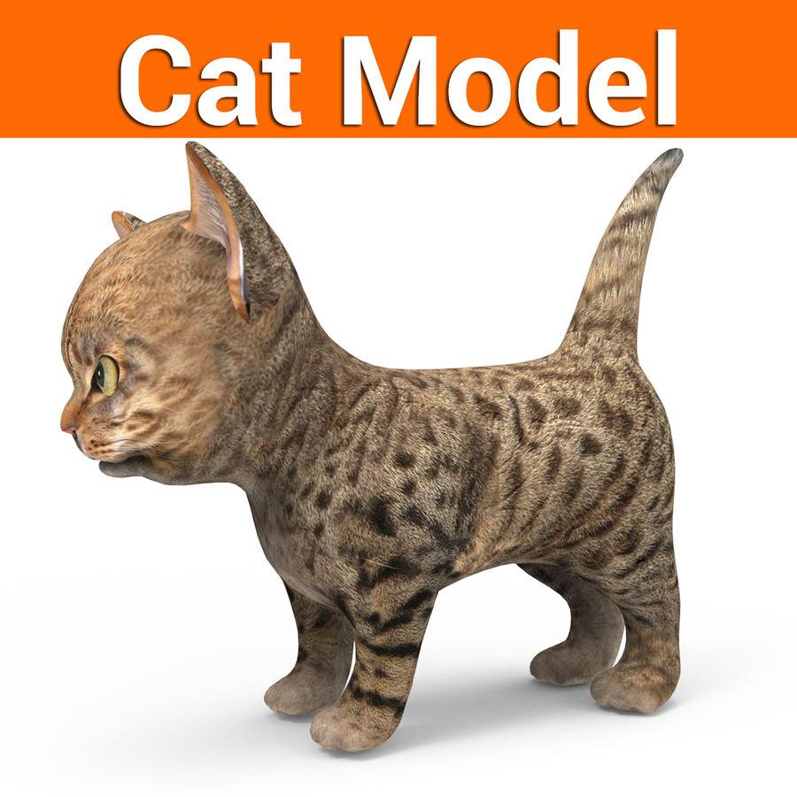 sevimli kedi yavru kedi düşük Poli royalty-free 3d model - Preview no. 1
