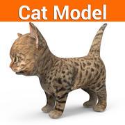 cute cat kitten low poly 3d model