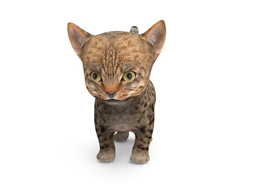 sevimli kedi yavru kedi düşük Poli royalty-free 3d model - Preview no. 2