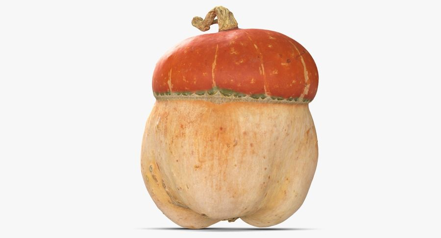 Pumpkin Small royalty-free 3d model - Preview no. 4