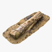 Trädstam på stranden 3d model