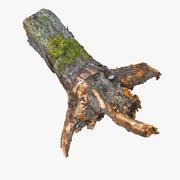 死んだ現実的な木の幹切り株樹皮要素自然園2 3d model
