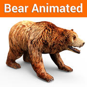 Brown bear low poly animated 3d model