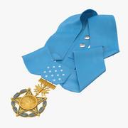 Медаль за откладывание военно-воздушных сил 3d model