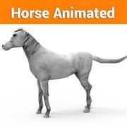 vit häst animerad 3d model