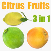 Citrus Fruits Collection 3d model