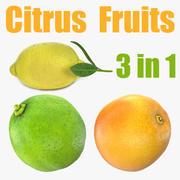 柑橘類のコレクション 3d model