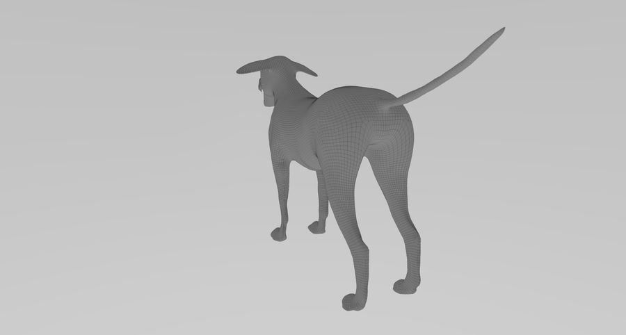 Greyhound Character royalty-free 3d model - Preview no. 12