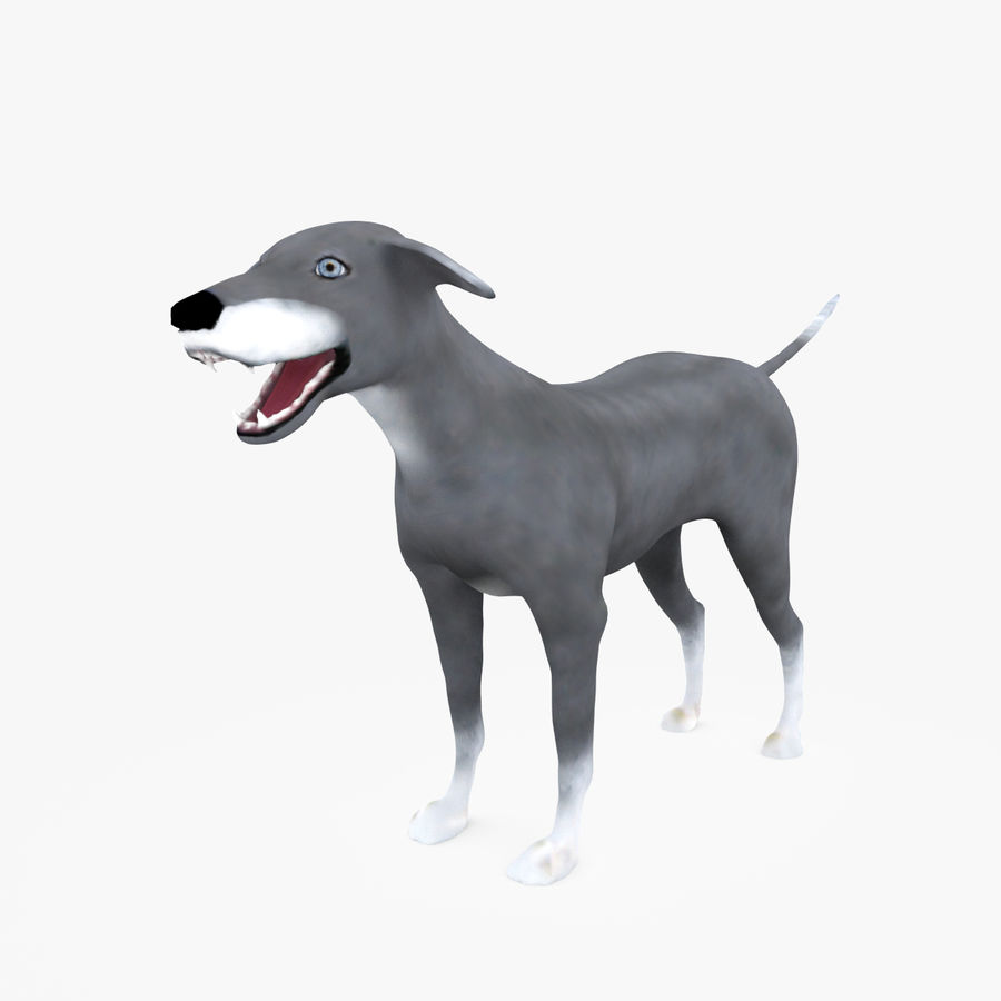 Greyhound Character royalty-free 3d model - Preview no. 1