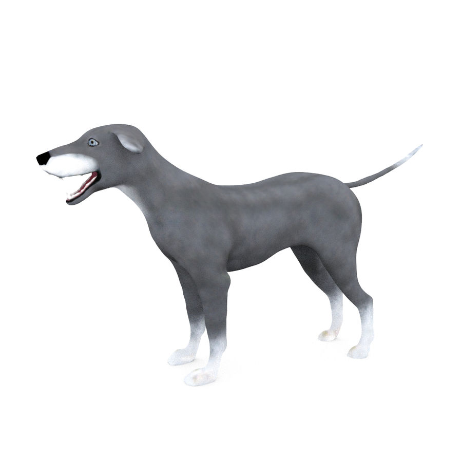 Greyhound Character royalty-free 3d model - Preview no. 3