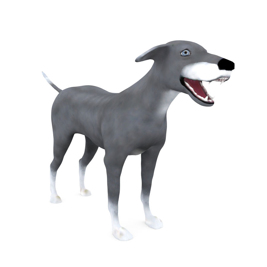 Greyhound Character royalty-free 3d model - Preview no. 9