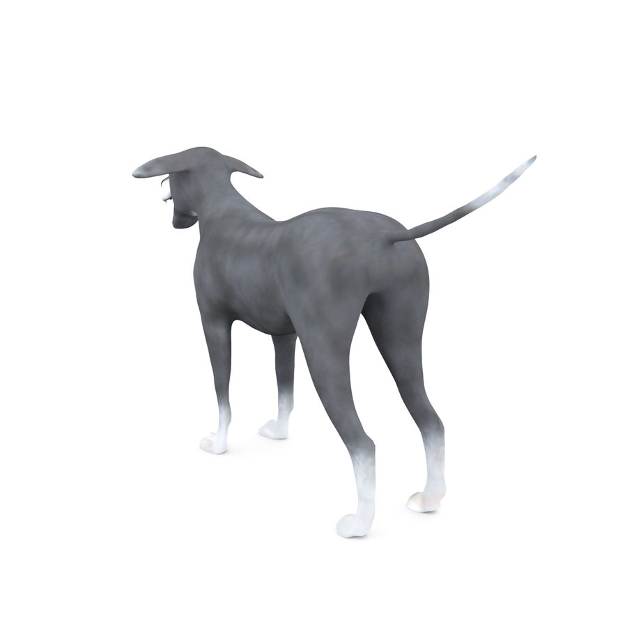 Greyhound Character royalty-free 3d model - Preview no. 5