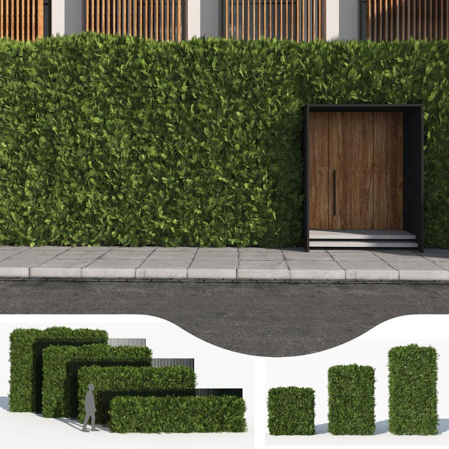 Coleção de sebes e arbustos (10 em 1) royalty-free 3d model - Preview no. 9