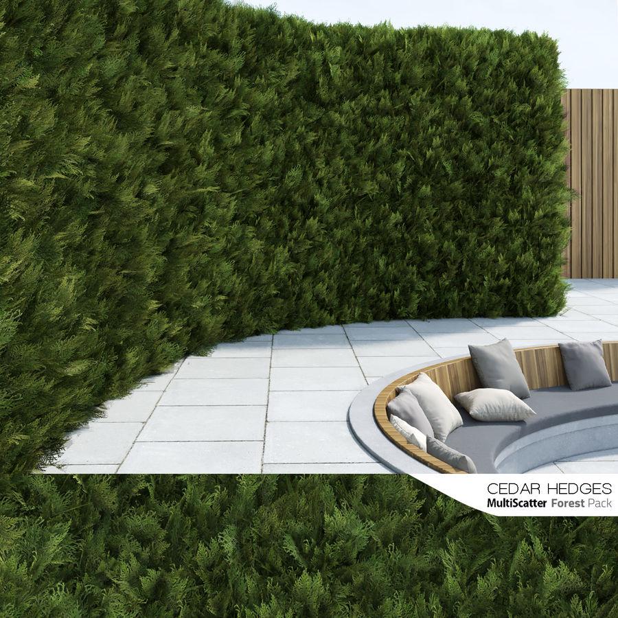 Coleção de sebes e arbustos (10 em 1) royalty-free 3d model - Preview no. 6