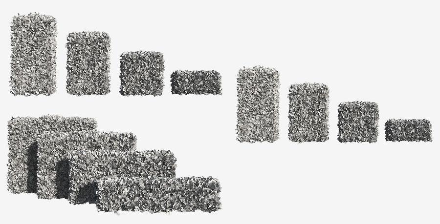 Coleção de sebes e arbustos (10 em 1) royalty-free 3d model - Preview no. 40