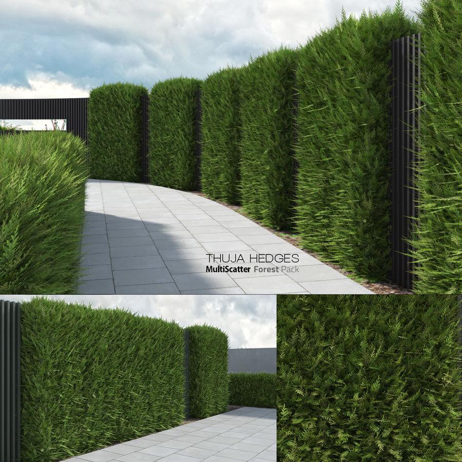 Coleção de sebes e arbustos (10 em 1) royalty-free 3d model - Preview no. 7