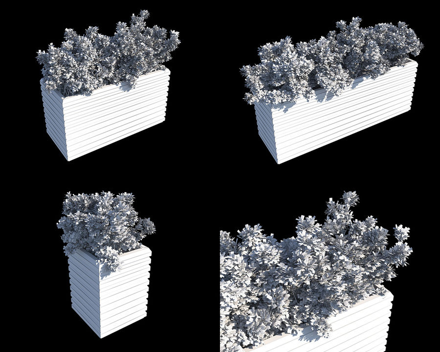 Coleção de sebes e arbustos (10 em 1) royalty-free 3d model - Preview no. 17