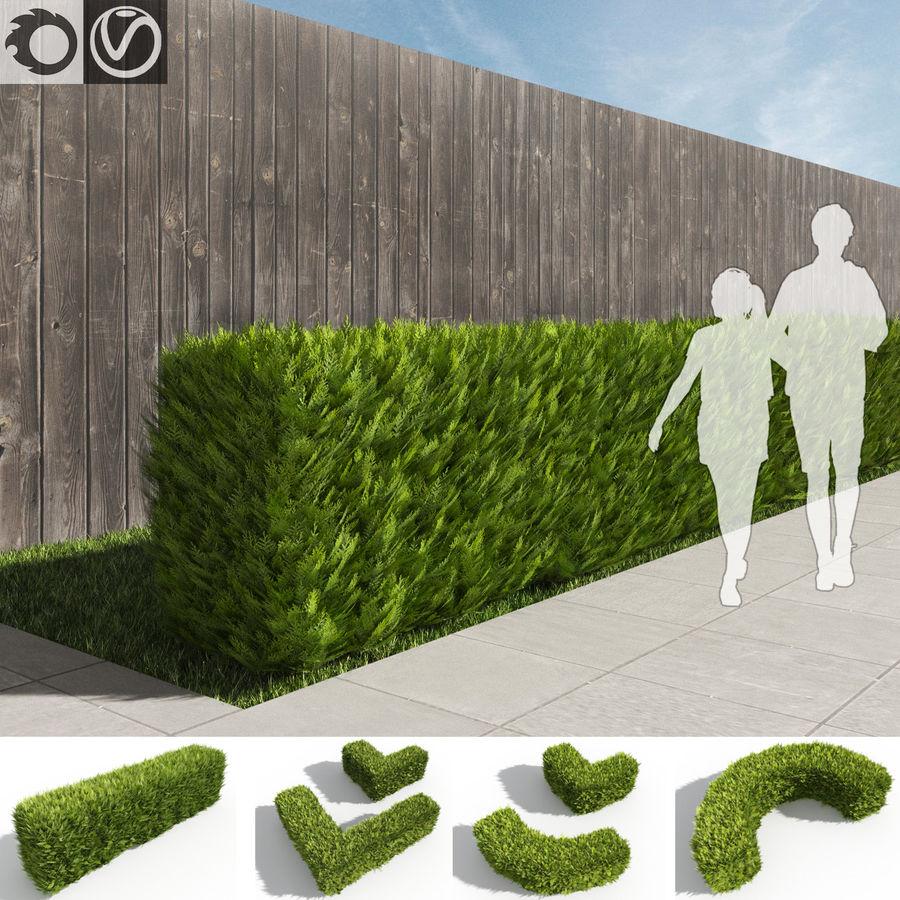 Coleção de sebes e arbustos (10 em 1) royalty-free 3d model - Preview no. 10