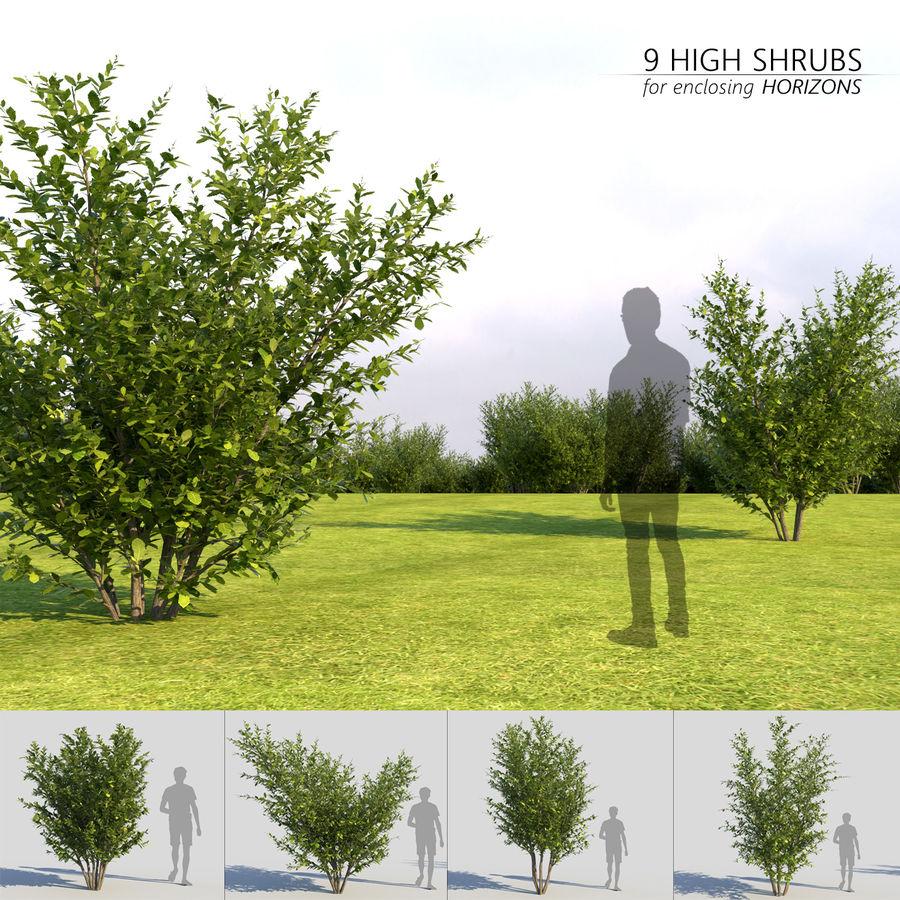 Coleção de sebes e arbustos (10 em 1) royalty-free 3d model - Preview no. 4