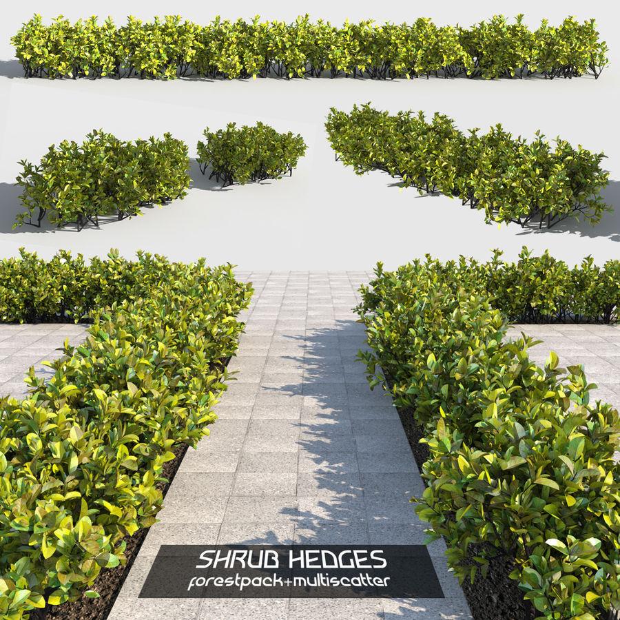 Coleção de sebes e arbustos (10 em 1) royalty-free 3d model - Preview no. 5