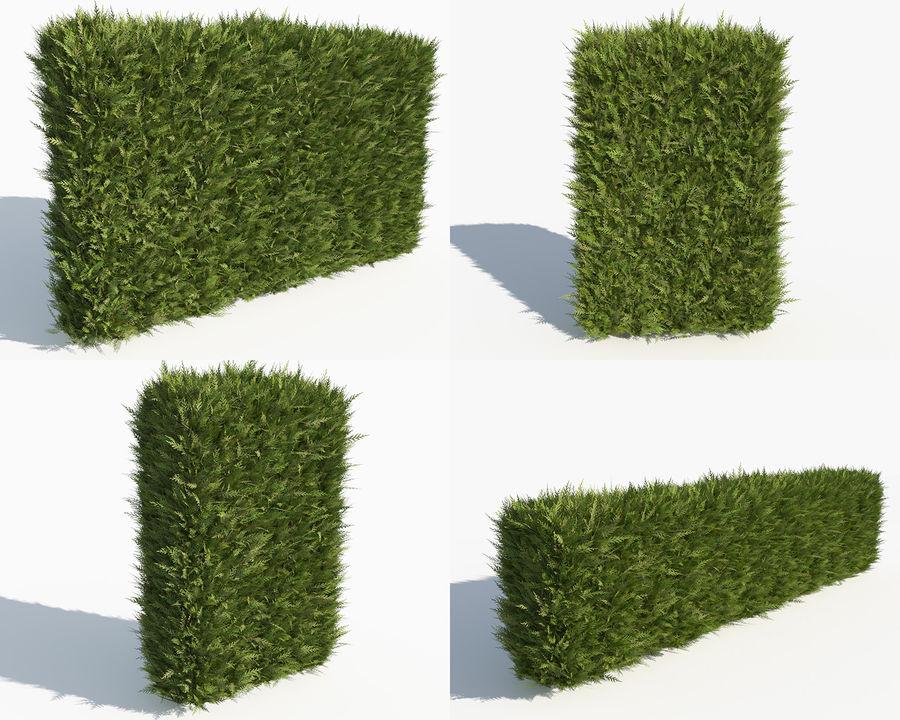 Coleção de sebes e arbustos (10 em 1) royalty-free 3d model - Preview no. 27