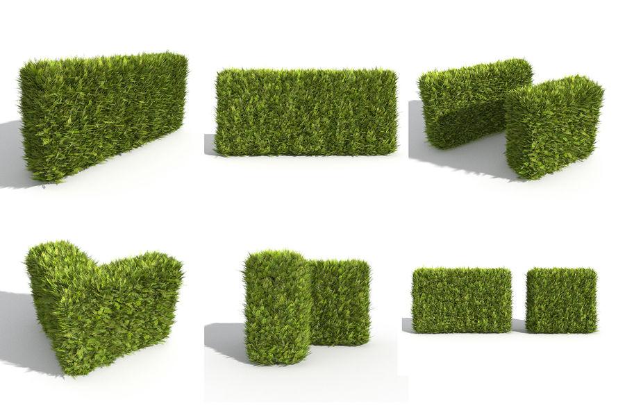 Coleção de sebes e arbustos (10 em 1) royalty-free 3d model - Preview no. 44
