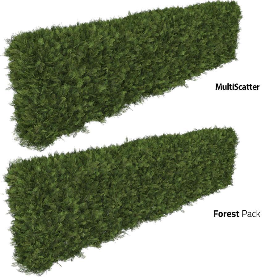 Coleção de sebes e arbustos (10 em 1) royalty-free 3d model - Preview no. 23