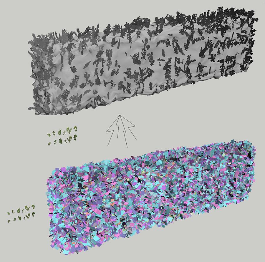 Coleção de sebes e arbustos (10 em 1) royalty-free 3d model - Preview no. 25