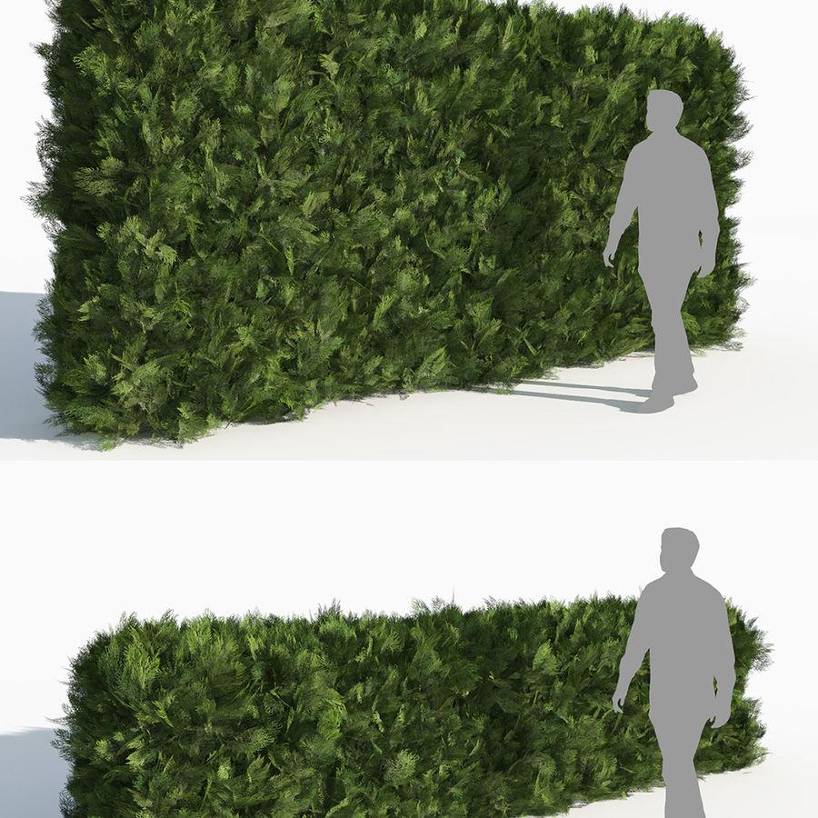 Coleção de sebes e arbustos (10 em 1) royalty-free 3d model - Preview no. 39