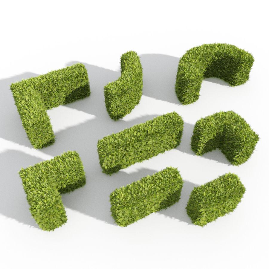 Coleção de sebes e arbustos (10 em 1) royalty-free 3d model - Preview no. 45