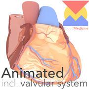 W pełni animowane serce 3d model