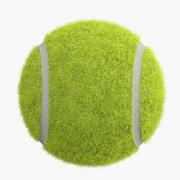 Bola de tênis 3d model