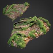 3D escaneado naturaleza bosque cosas 011 modelo 3d
