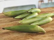 玉米绿叶 3d model