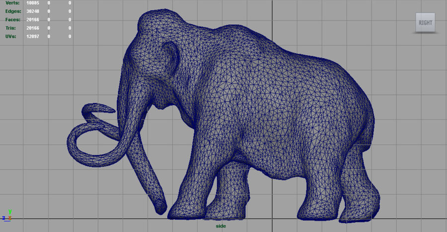 Mammut royalty-free 3d model - Preview no. 12