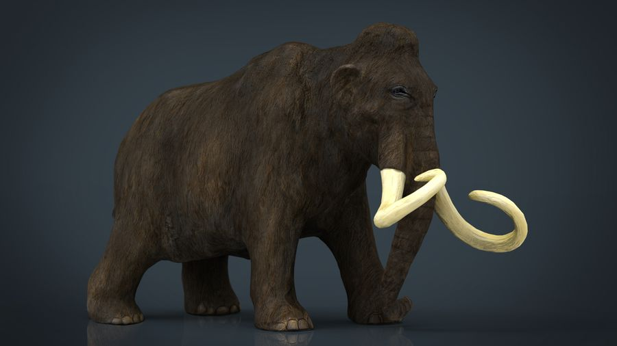 Mammut royalty-free 3d model - Preview no. 2